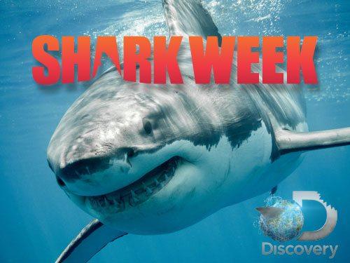 shark-week-2016.jpg